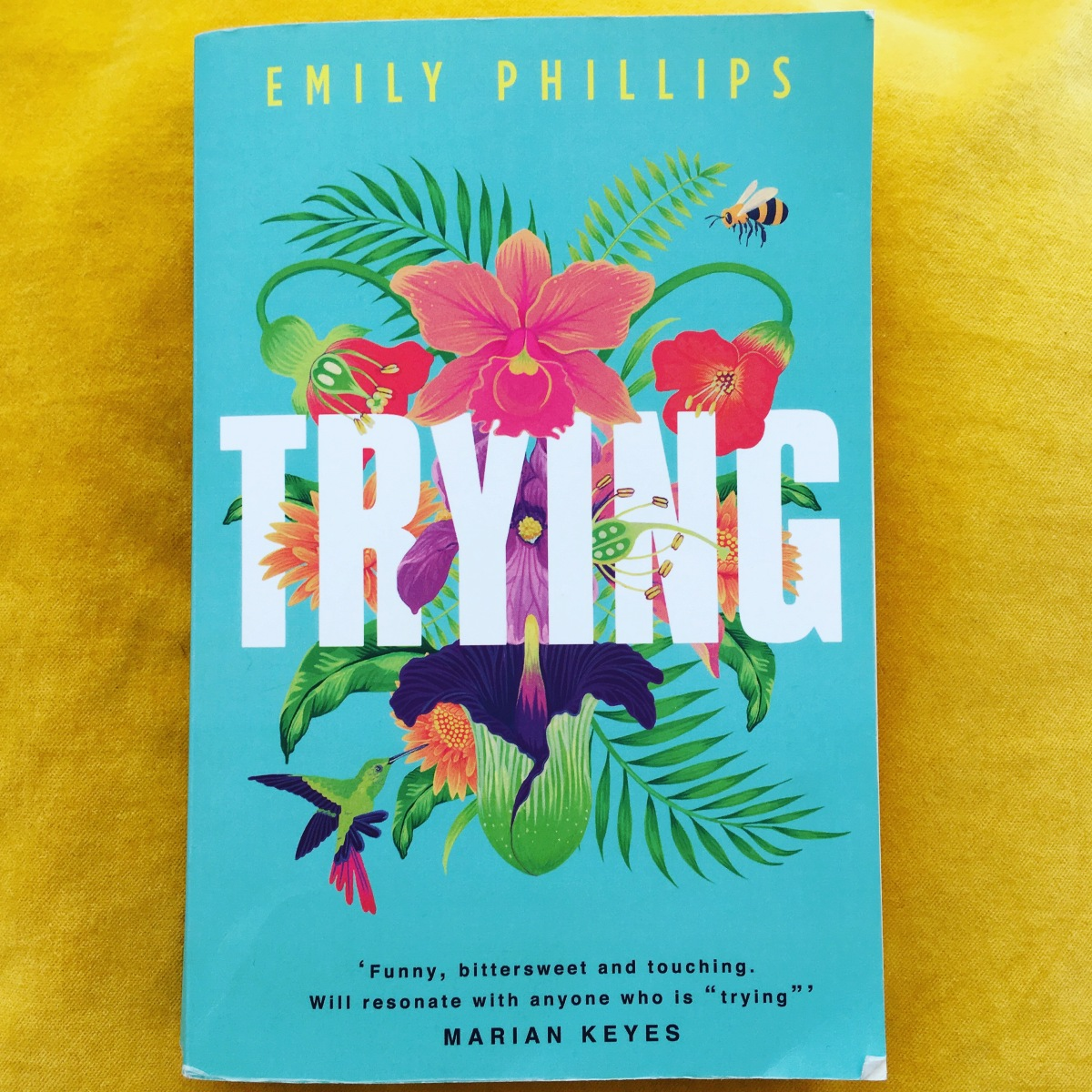 Book review: Trying by Emily Phillips